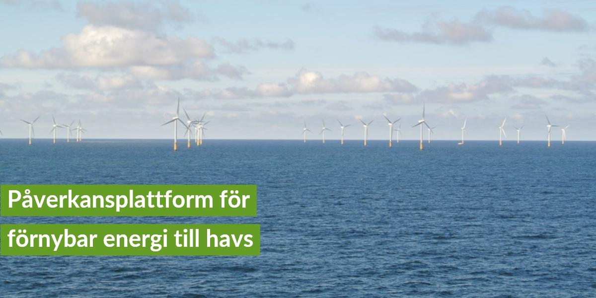 Påverkansplattform för förnybar energi till havs